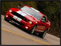 Shelby, Ford Mustang